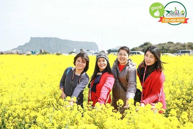 ครอบครัวคุณปามศุภานัน เที่ยวเกาะเจจู